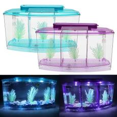 aquariumthermometer, Box, fishaquarium, Tank