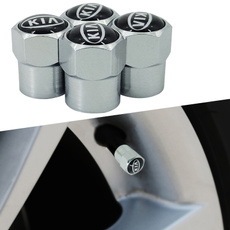 Wheels, Cap, dustcover, Stainless Steel
