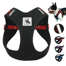 outgoing, Adjustable, Collar, Pets