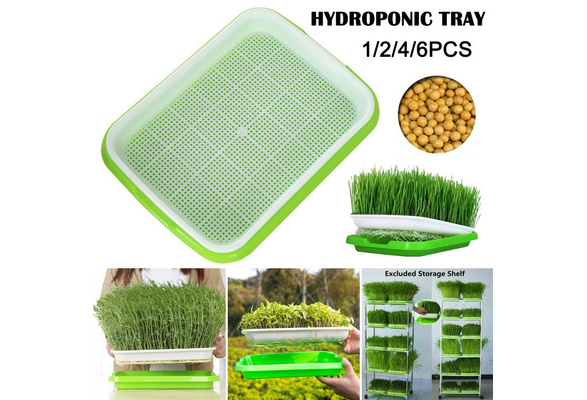 Seed Sprouter Tray Plant Germination Trays Double Layer Hydroponics Basket Wish