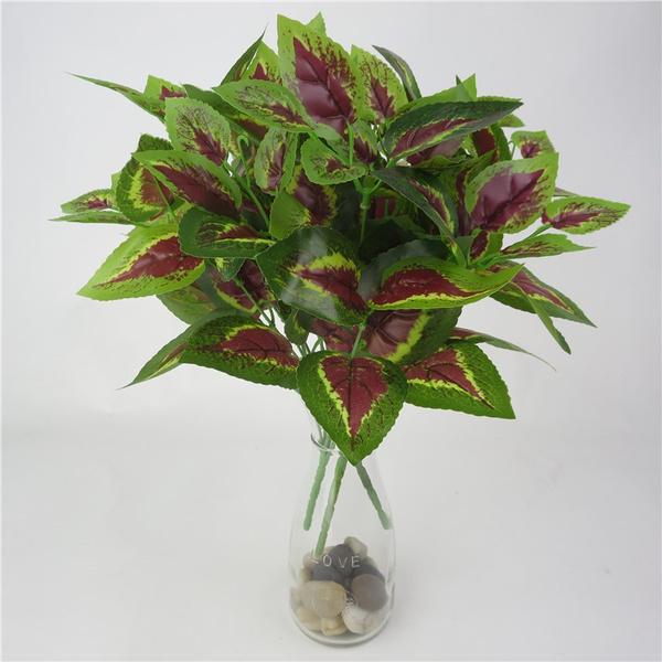 plasticflower, Plants, Flowers, leaf