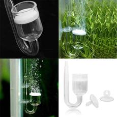 aquariumequipment, glasstube, Tank, Cup