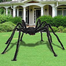 partydeocr, Outdoor, blackspider, house
