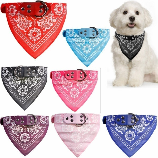 neckscarf, Fashion, Dog Collar, Necks
