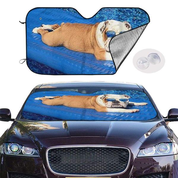 windshield, sunshad, bulldog, Sun