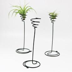 airplantstand, flowerpotsplanter, Plants, Garden