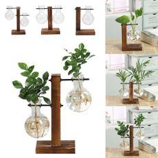 Bonsai, Plants, woodenvase, vaseflower