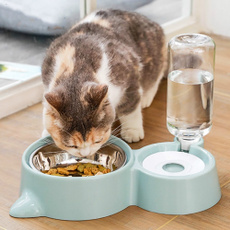 foodbowl, petfeeder, Pets, catbowl