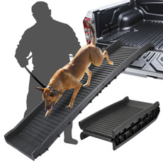 stair, Pets, Cars, ladder