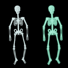 skeletondecordecoration, fluorescentskeleton, Skeleton, Halloween