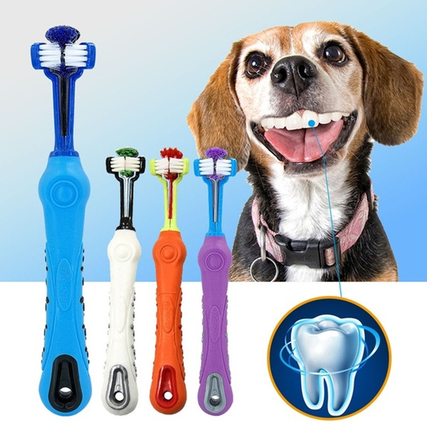 Cleaner, Teddy, Pets, dogtoothbrush