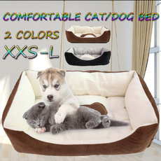 cute, Pet Bed, dogsofabed, Pets