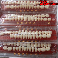 guideteeth, practiceusing, oralmaterial, dental