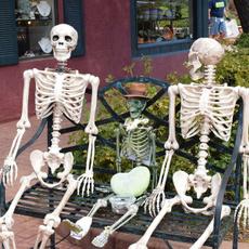 decoration, Skeleton, partyprop, halloweengift