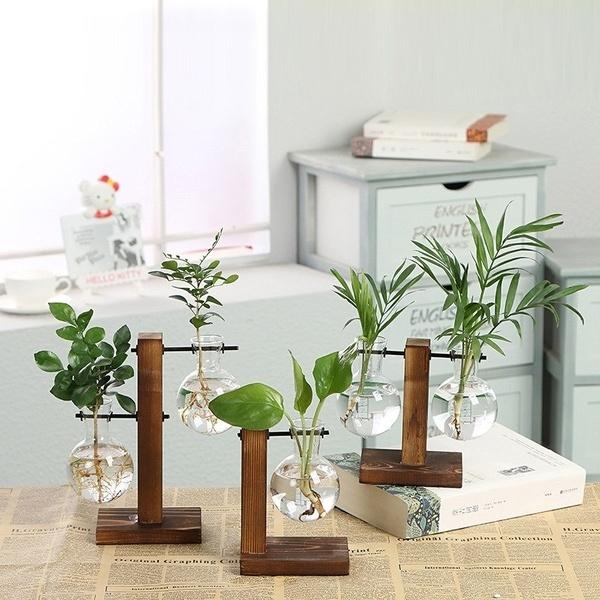 Bonsai, transparentglassvase, Plants, Home Decor
