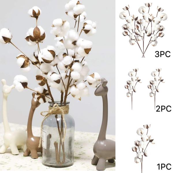 driedcottonstem, Plants, artcraft, Home Decor