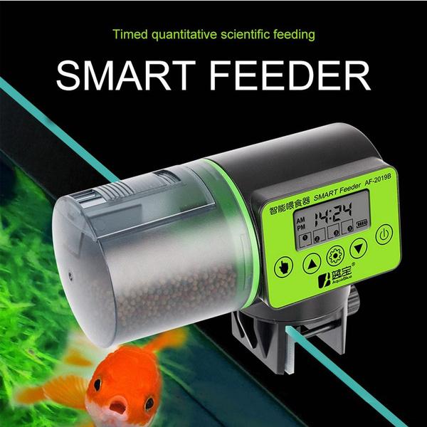 Tank, timerfeeder, fishfoodtimerfeeder, fish