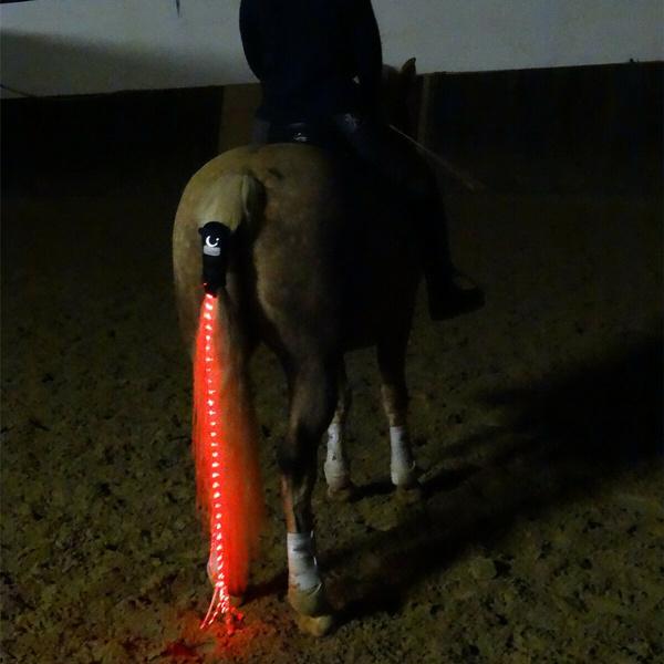 horserearlight, horse, horseriding, led