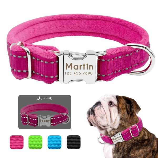 pink, Blues, reflectivedogcollar, personalizedlargedogcollar