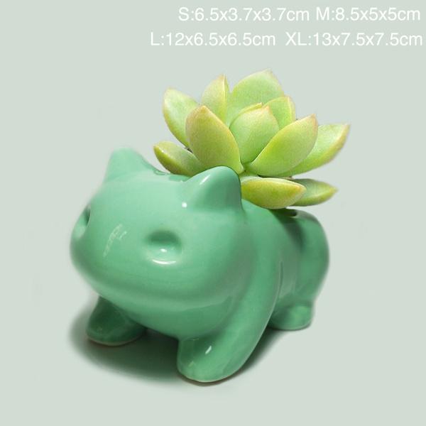 Bonsai, succulent, Plants, art