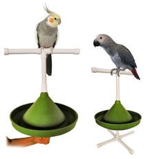 Bath, standingperch, Toy, Parrot