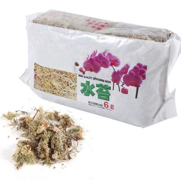 organicfertilizer, Nutrition, waterretention, phalaenopsisorchid
