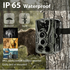 trailcamera, Hunting, nightvision, Digital Cameras