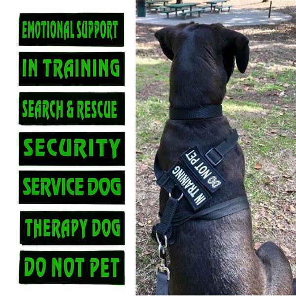 therapydogvelcropatche, therapydogpatch, servicedogapparel, Pets