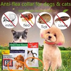 Pet Supplies, doggrooming, antiflea, Jewelry