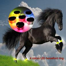 horse, horseriding, ledhorsestrap, Ring