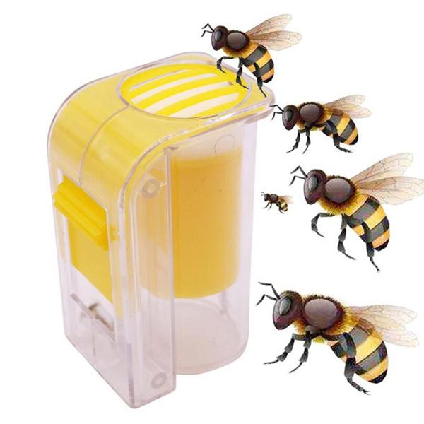 beekeeping, Bottle, duckbill, queenbeecatcher