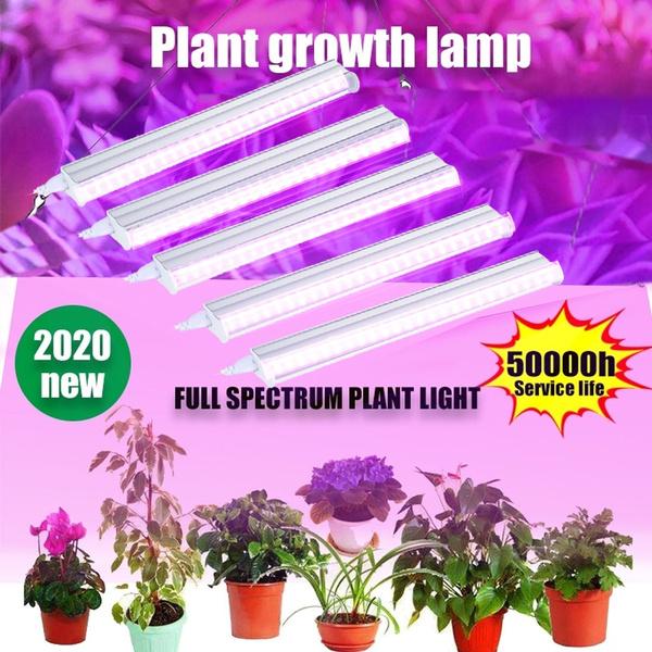 Plants, led, Shelf, ledgrowlightstrip