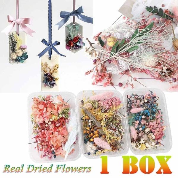 Box, flowersampplant, Flowers, Jewelry