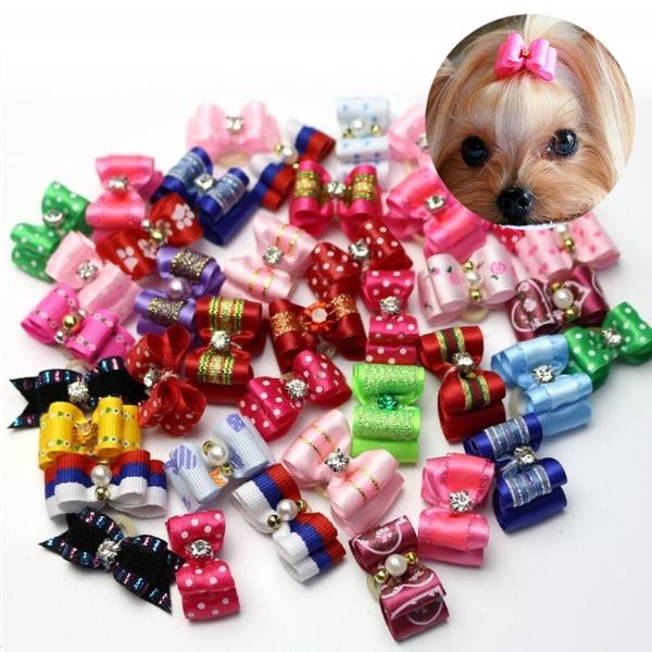 cute, bowknot, Pets, dogampcat