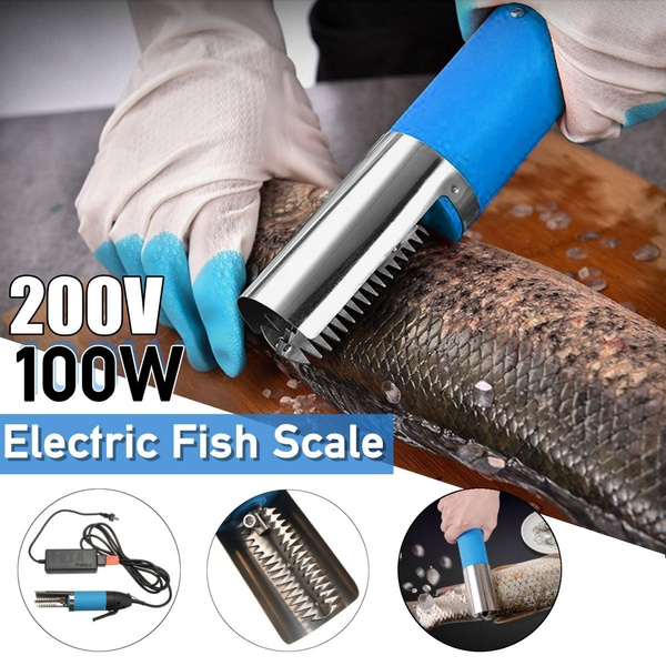 scalesremover, scalescraper, Stainless Steel, Electric