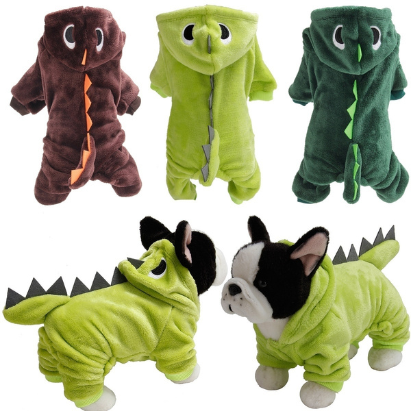 pet dog, puppy, dog coat, Winter