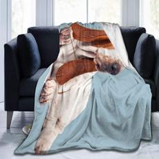 bassethounddog, Fleece, couch, hypoallergenic