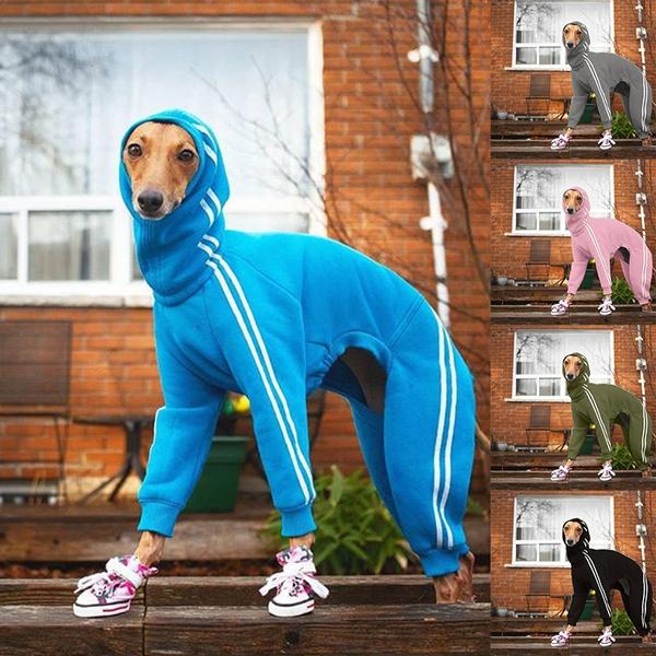 Jacket, warmcoatdog, dog coat, Winter