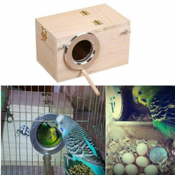 Box, petaccessorie, birdbathsnest, budgiebreedingnesting