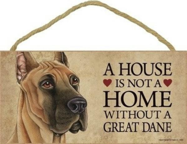 great, I, house, Pets
