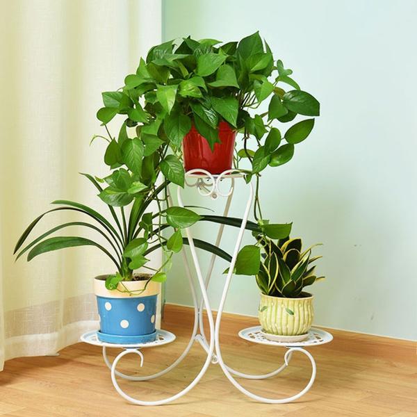 Plants, Flowers, Home Decor, Home & Living