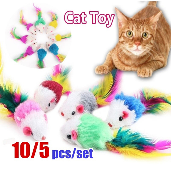 dogtoy, Funny, Toy, Colorful
