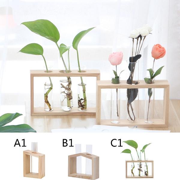 Plants, Flowers, Home Decor, glassvase