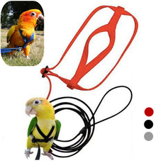 birdstoy, Fashion Accessory, Toy, Parrot