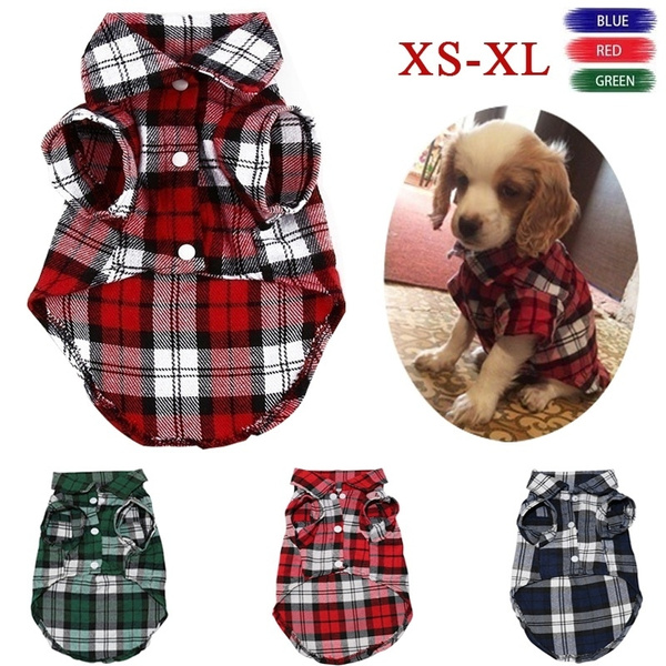 pettshirt, puppy, Clothes, Pets