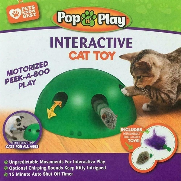 cattoy, Toy, TV, dogampcat