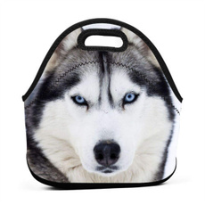 nsulatedlunchbag, lunchbagtotebag, School, travelampshoppingbag