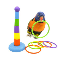 Development, pettoyforparrot, Toy, Colorful