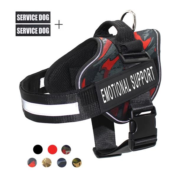 Vest, Outdoor, Dog Collar, walkingdog