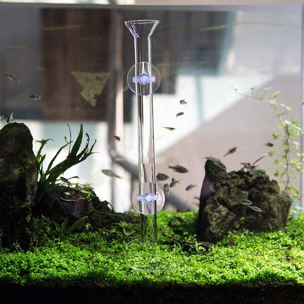 fishaquarium, foodfeedertray, shrimpfeedingtubedish, Glass